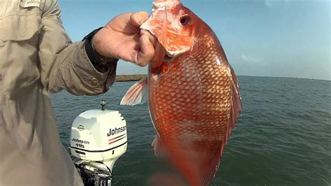 Port O'Connor Texas Red Snapper caught at Jetties Jetty