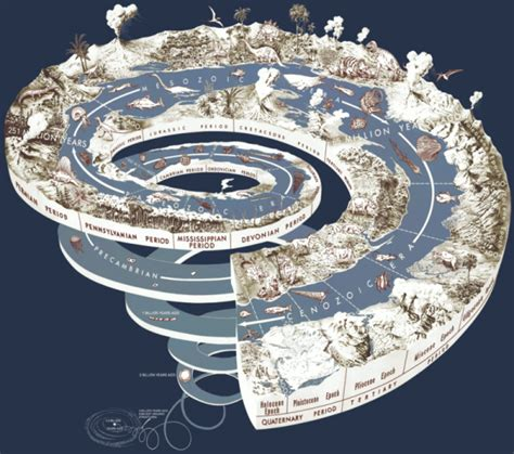 What is the Anthropocene? | Earth | EarthSky